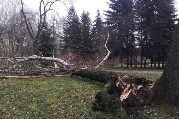 ВКузбассе устранили последствия урагана