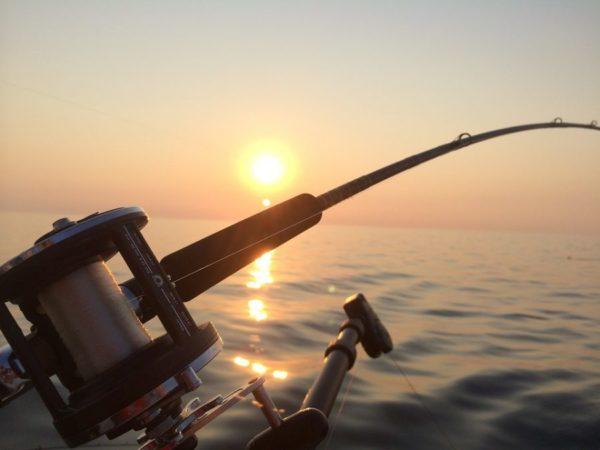 Приставы арестовали удочку рыбака изМысков задолг 200 000  руб.