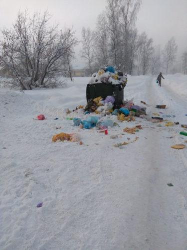 Жители города Междуреченск жалуются на обилие прошлогоднего мусора в контейнерах