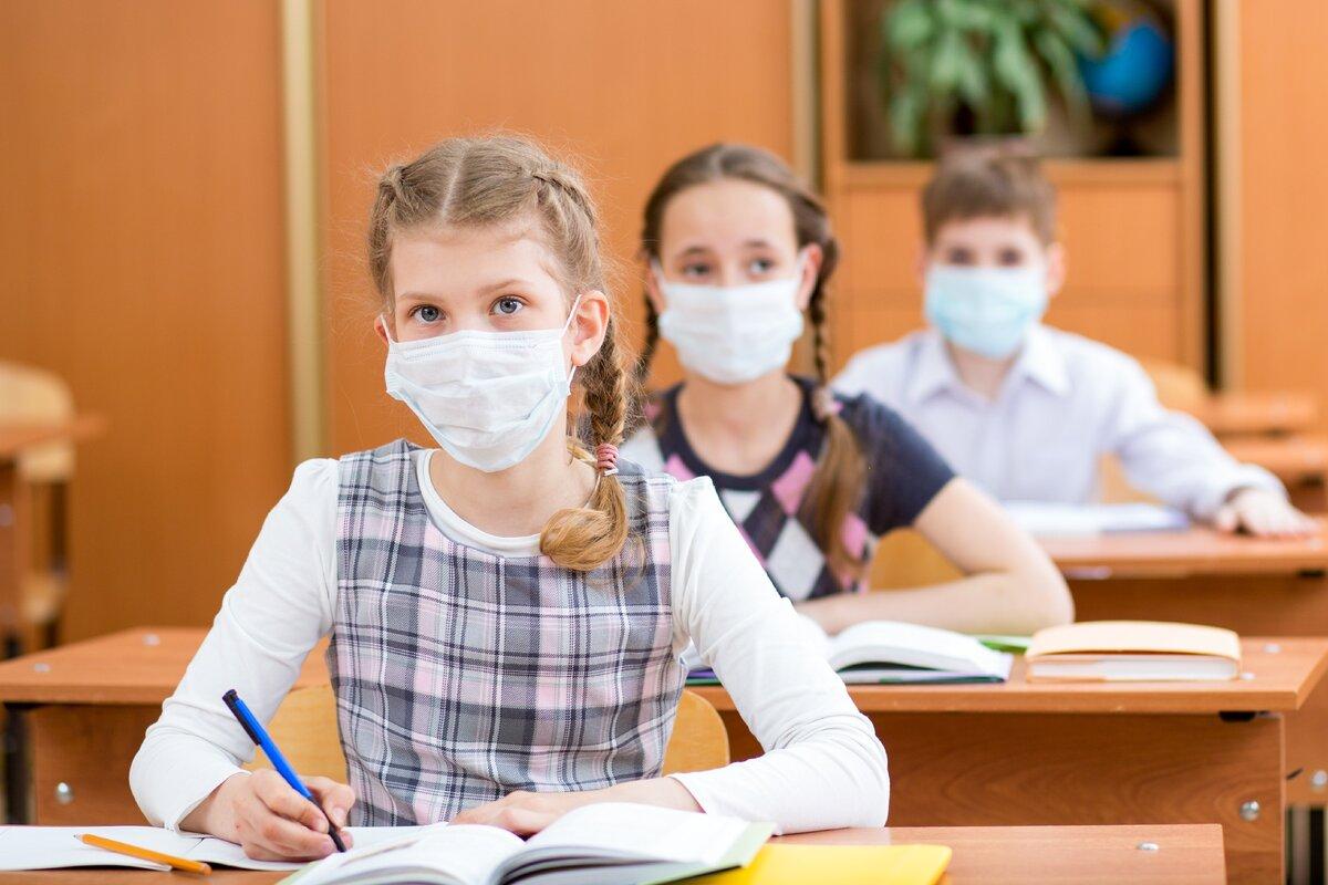 Российские школы будут работать в обычном режиме с 1 сентября: полагают эксперты